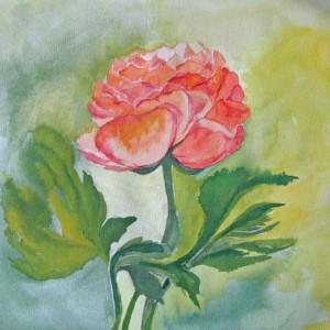 Rose, 21x21 cm