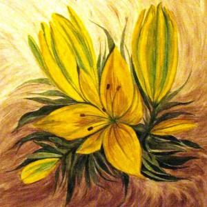 Lilien, 50x50 cm